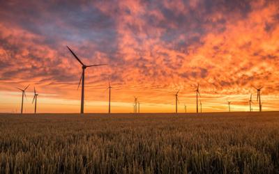 Videoscope Features That Make Wind Turbine Maintenance Easier
